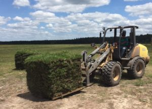 sod farm, sod pallets, pickup, order, sod delivery, sod,installation,install,order,